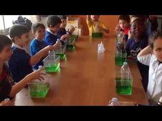Esperimenti di scienze - L'aria occupa uno spazio - YouTube Science For Kids, Youtube, Disability, Cincinnati, 3, Lab