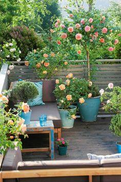 jardin deco, déco jardin récup, amenagement jardin, sceaux en bleu canard avec des roses, canapé avec des coussins marron, petit espace fleuri entouré de cintre