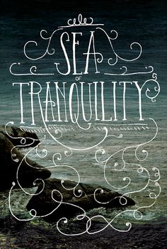 Sea of Tranquility by Shauna Lynn Panczyszyn, via Behance