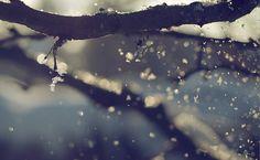 winter colors...