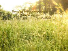 Sunbeams, Field, Inspiration, Dewdrops, Landscape - Orignal Photograph #0361 by…