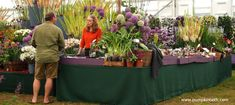 2020 Specialist Plant Fairs, Festivals, Sales, and Swaps - Pumpkin Beth Sussex Gardens, Flowers For Valentines Day, Orchid Show, Spring Plants, Buy Plants, Garden Show, Hardy Plants, Formal Gardens, Plant Sale