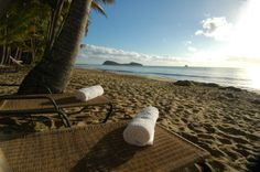 Alamanda Palm Cove by Lancemore - Beachfront with view to double Island
