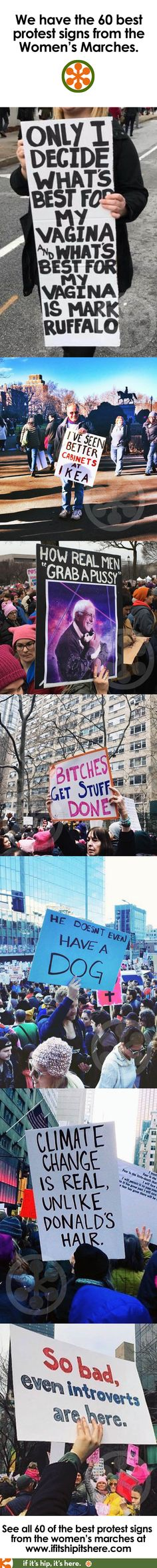 No other post has better protest signs from the Women's Marches than we do. See them all at http://www.ifitshipitshere.com/womens-march-signs/  #womensmarchsigns
