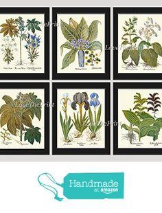 Blue Flower Botanical Print Set of 6 Antique Wall Art Beautiful Campanula Iris Mandragora Dragonmouth Flowers Green Nature Home Room Decor Wall Art Unframed BES from LoveThePrint https://www.amazon.com/dp/B01N3QG66H/ref=hnd_sw_r_pi_dp_rOpjyb3AD748M #handmadeatamazon