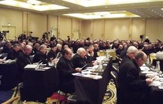 Cardinal Dolan calls bishops to conversion at annual meeting :: Catholic News Agency (CNA)