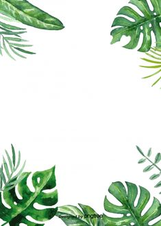 Neon Tropical Plant Light Effect Background Tropical Background, Plant Background, Background Images, Watercolor Plants, Green Watercolor, Watercolor Background, Green Plants, Tropical Plants, Flower Backgrounds