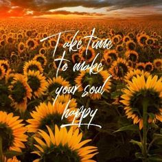 Sunflower Quotes, Sunflower Pictures, Sunflower Art, Sunflower Iphone Wallpaper, Flower Phone Wallpaper, Iphone Background Wallpaper, Aesthetic Backgrounds, Aesthetic Iphone Wallpaper, Aesthetic Wallpapers