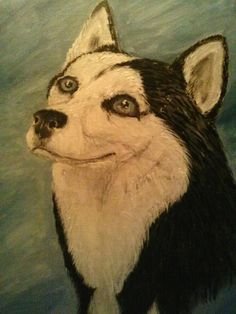 Bali, Husky, Portrait, Dogs, Painting, Animals, Animales, Headshot Photography, Animaux