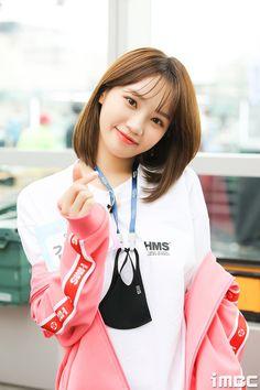 Kpop Girl Groups, Korean Girl Groups, Kpop Girls, Yuri, Cute Girls, Cool Girl, Honda, Fandom, Japanese Girl Group