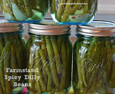 "Crunchy and perfect for snacking or in a bloody mary, you'll love our ""Farmstand Spicy Dilly Beans"" - Makes 6 Pint Jars"