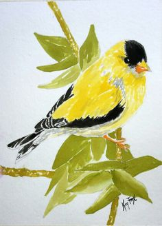 Watercolor classes with Kay . Simple, fun. Seymour Indiana. Yellow Finches .