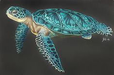 Sea Turtle (page by Elizabeth C. Sea Turtle Painting, Sea Turtle Art, Turtle Love, Sea Turtles, Turtle Tattoos, Ocean Tattoos, Tribal Tattoos, Tortoise Tattoo, Black Paper Drawing