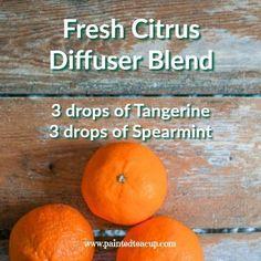 Fresh Citrus Diffuser Blend | Essential Oil Diffuser Blend | Tangerine Essential Oil, Spearmint Essential Oil Diffuser Blend