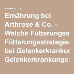 Ernährung bei Arthrose & Co. - Welche Fütterungsstrategien bei Gelenkerkrankungen? von Ute Wadehn