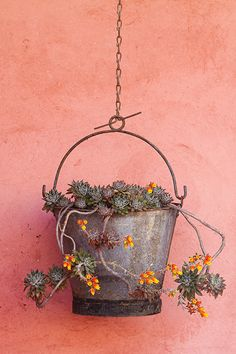 I love this!! Think maybe I'll make one. Old Bucket and Suculent Plant