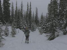 Winter Wonderland in Chester Lake, Alberta! Windermere, Chester, The Great Outdoors, Winter Wonderland, Journey, Canada, Adventure, Mountains, Nature