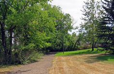 Hiking short and easy Nature Trail in Tillebrook Provincial Park near Brooks, Alberta, Canada #hiking