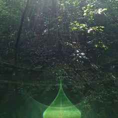 【mariko.onodera】さんのInstagramをピンしています。 《こちらも宗像大社  中津宮の森での光✴ マニダマみたいなかわいい形❤ #小野寺MARIKO  #宗像大社  #光  #森》