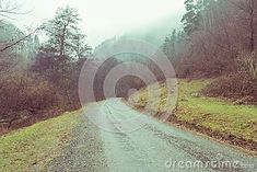 Photo about Misty autumn foggy morning in the forest landscape. Image of retro, natural, dense - 107030213 Misty Forest, Foggy Morning, Forest Landscape, Country Roads, Autumn, Celestial, Mountains, Retro, Natural