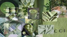 Aesthetic sage green collage wallpaper for desktop