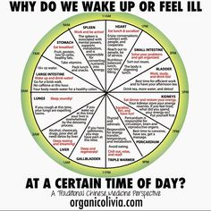Chinese medicine explains what you should be doing with your body/self at each hour of the day for ultimate health benefits