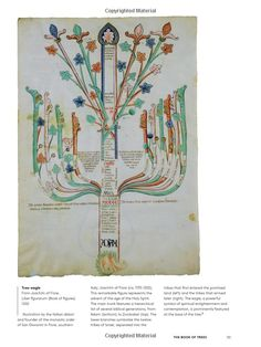 The Book of Trees: Visualizing Branches of Knowledge: Manuel Lima, Ben…