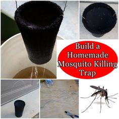 The Homestead Survival | Build a Homemade Mosquito Killing Trap | http://thehomesteadsurvival.com