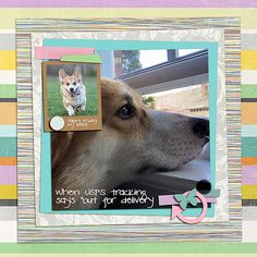 page by lisa pink reptile may 2016 blog challenge