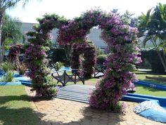 Arco de flores na Praça Ponto de Encontro.