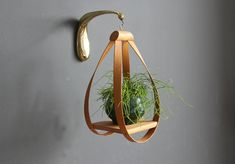 A gorgeous way to display a houseplant.