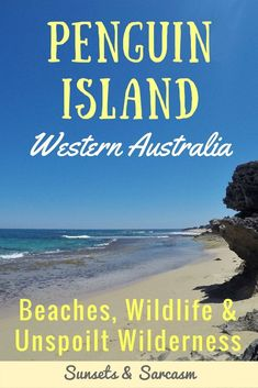 Enjoy a relaxed day trip from Perth at beautiful Penguin Island in Western Australia. Explore nature trails, see little penguins & swim with dolphins. Moving To Australia, Australia Beach, Visit Australia, Australia Travel, Western Australia, Melbourne, Sydney, Brisbane, Cairns