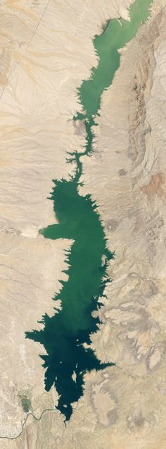 """[Elephant Butte Reservoir, New Mexico's largest reservoir, which supplies water to """"about 90,000 acres of farmland and nearly half the population of El Paso""""; the GIF above (by mammoth) combines NASA Earth Observatory satellite imagery from 1994 and 2013 to show the depletion caused by repeated droughts since 2000. Now off to start tumblrs of GIFs of large-scale landscape change.]"""