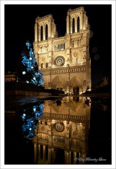 Christmas in Notre Dame, Paris. What a beautiful photograph! Places Around The World, Around The Worlds, Monuments, I Love Paris, Tour Eiffel, France Travel, Great View, Belle Photo, Paris France