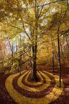 The ephemeral land art of Sylvain Meyer