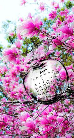 Wallpaper iPhone #April 2016#calendar Cool Wallpaper, Iphone Wallpaper, April Images, Cool Calendars, New Month, Butterfly Wallpaper, Fb Covers, April Showers, Cute Couples Goals