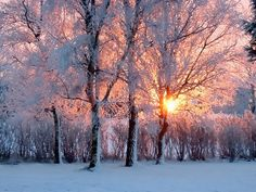 (Source: michdesousa, via wintercozy)  http://tinywhitedaisies.tumblr.com/page/4