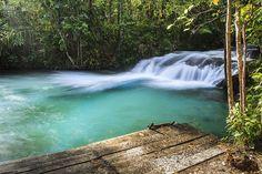 Cachoeira do Formiga (Mateiros - TO) A cachoeira do Formiga é uma pequena queda d'água, cercada por uma vegetação exuberante, de árvores altas, samambaias e moitas de palmeiras nativas. Mas o espetáculo mesmo fica por conta da piscina formada ao pé da cachoeira, onde águas de um verde-esmeralda encantador convidam ao mergulho.