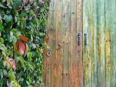 Evet,bazı kapılar diğerlerinden daha güzel.