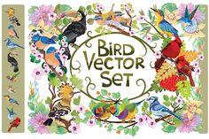 Bird vector set by Kopirin on @creativemarket