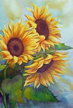 Girasoles Sunflowers Large Watercolor Painting in Yellow by sherryroper Oil Painting Flowers, Watercolor Flowers, Painting & Drawing, Watercolor Art, Sunflower Watercolour, Watercolor Paintings For Beginners, Plant Drawing, Beginner Painting, Arte Floral