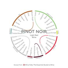 Guide to tasting the 9 styles of wine. Get an understanding of the range of wines through the world