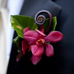 The Boutonnières    The groom had an orchid accented with a fiddlehead fern for his boutonnière.