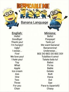one side is list of english words and the other side is the minion translation