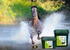 Het is WARM... 🌞🌞 en dat geldt ook voor onze paardjes. Houd je paard(en) goed in de gaten en zorg voor voldoende drinken en schaduw. Je paard een handje helpen? 💦🐴 Horse #Electrolytes is ideaal voor het opnemen en vasthouden van vocht. Bevat belangrijke zouten en mineralen voor snel herstel van het lichaam. Ideaal bij warm weer! | I#hydratation #horses #warmweather #paarden #paardenverzorging Horse Supplies, Horses, Horse