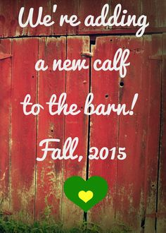Our dairy farm themed announcement, complete with John Deere colored hearts! I made it myself, from the photo used to the editing #farm #JohnDeere #baby #babyannouncement
