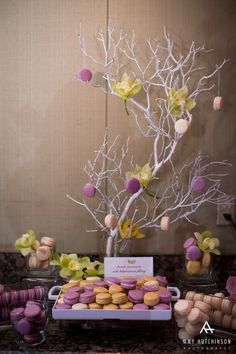 Macarons in tree