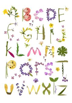 S Alphabet In Flowers ... on Pinterest | Calligraphy alphabet, Alphabet and Lettering