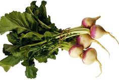 She loved turnips and turnip greens.Turnip Seeds – Vegetable Seeds On Sale Herb Seeds, Garden Seeds, Turnip Greens, Beautiful Fruits, Pink Garden, Organic Seeds, Eating Raw, Flower Seeds