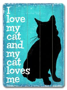 I love my Cat  and my cat loves me  (what we like to believe)